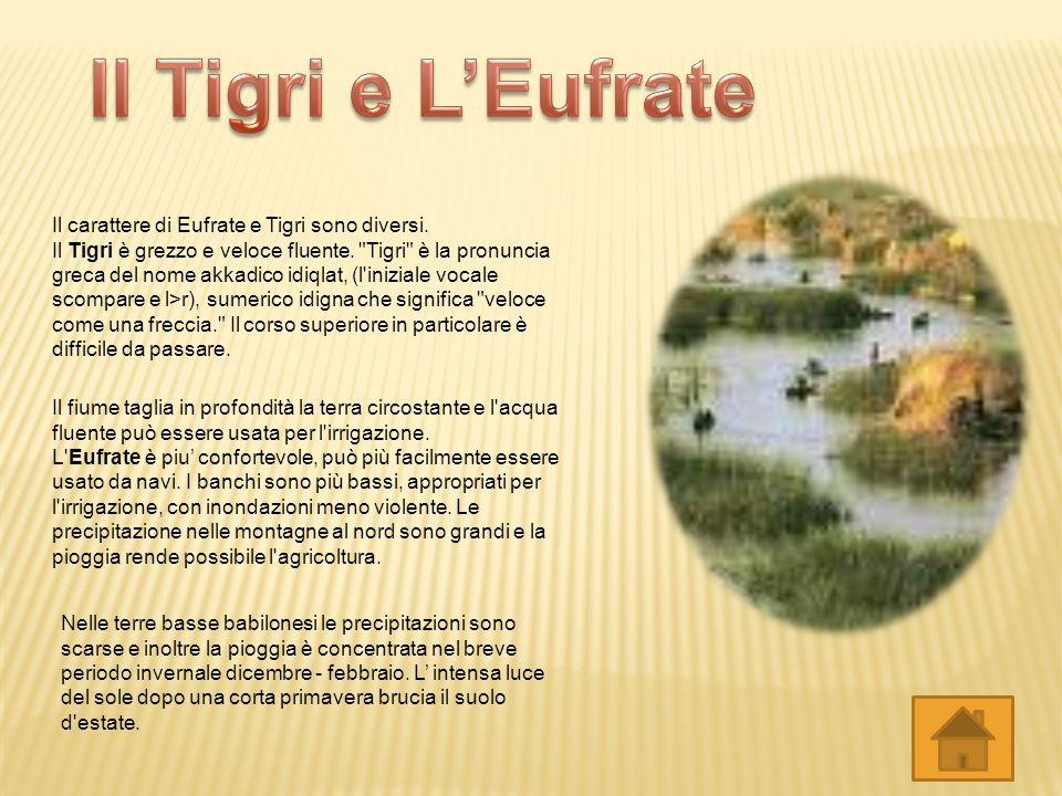 La ziqqurat (nota anche, secondo traduzioni fonetiche diverse, come ziggurat, ziqqurath, ziggurath), è la costruzione templare caratteristica delle re