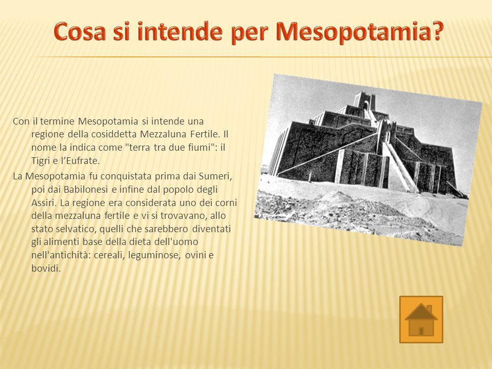Con il termine Mesopotamia si intende una regione della cosiddetta Mezzaluna Fertile.