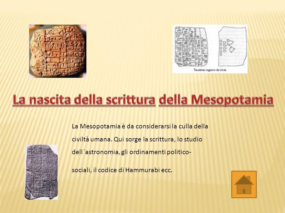 La Mesopotamia è da considerarsi la culla della civiltà umana.