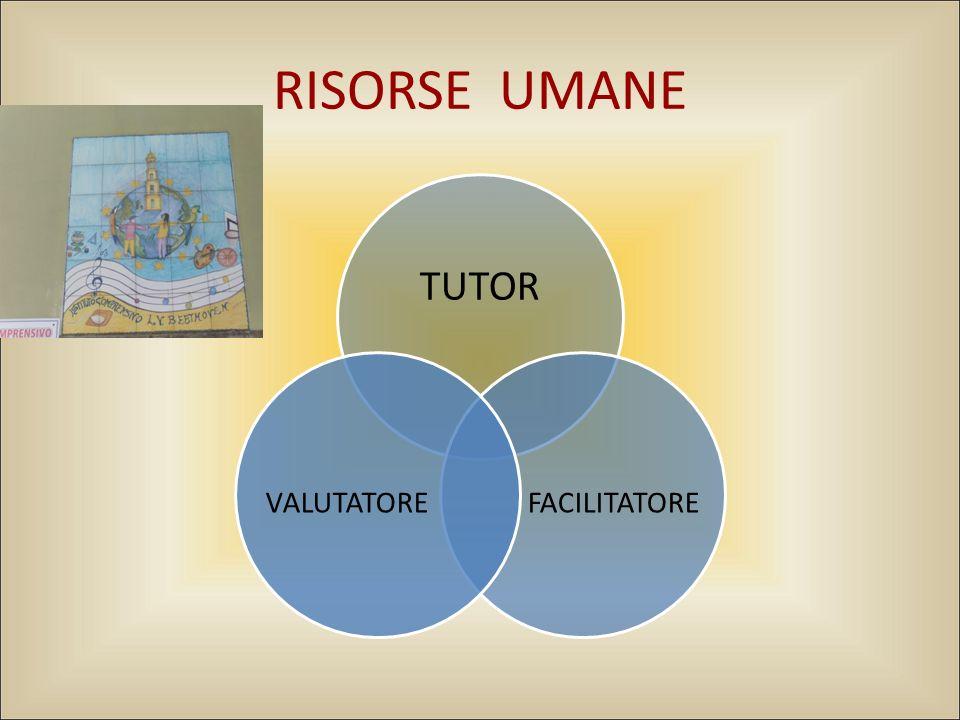 RISORSE UMANE TUTOR FACILITATOREVALUTATORE