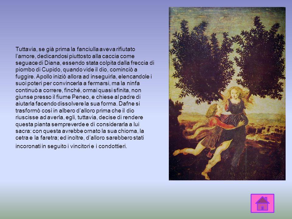 Dopo aver ucciso il serpente Pitone, Apollo si sentì particolarmente fiero di sé, perciò si vantò della sua impresa con Cupido, dio dellAmore, sorride