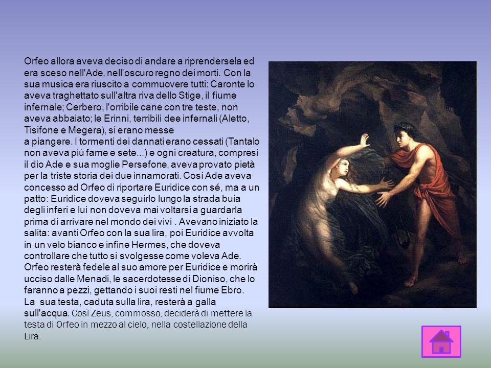 Orfeo era un poeta e un musico. Le Muse gli avevano insegnato a suonare la lira, ricevuta in dono da Apollo. La sua musica e i suoi versi erano così d