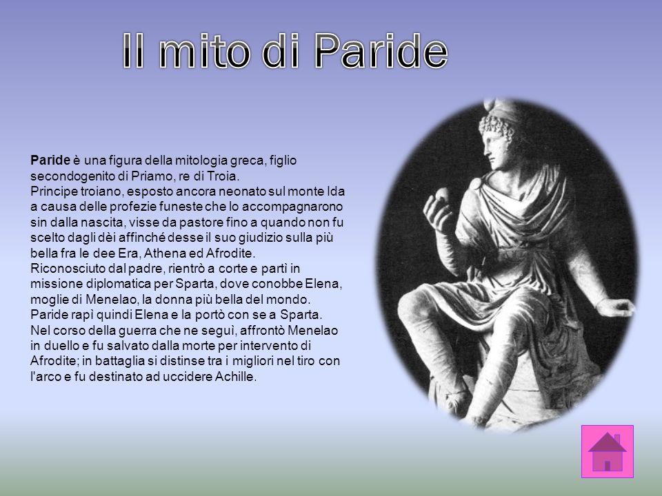 Minerva, irritata, strappò in cento pezzi il lungo lavoro di Aracne, gridando: