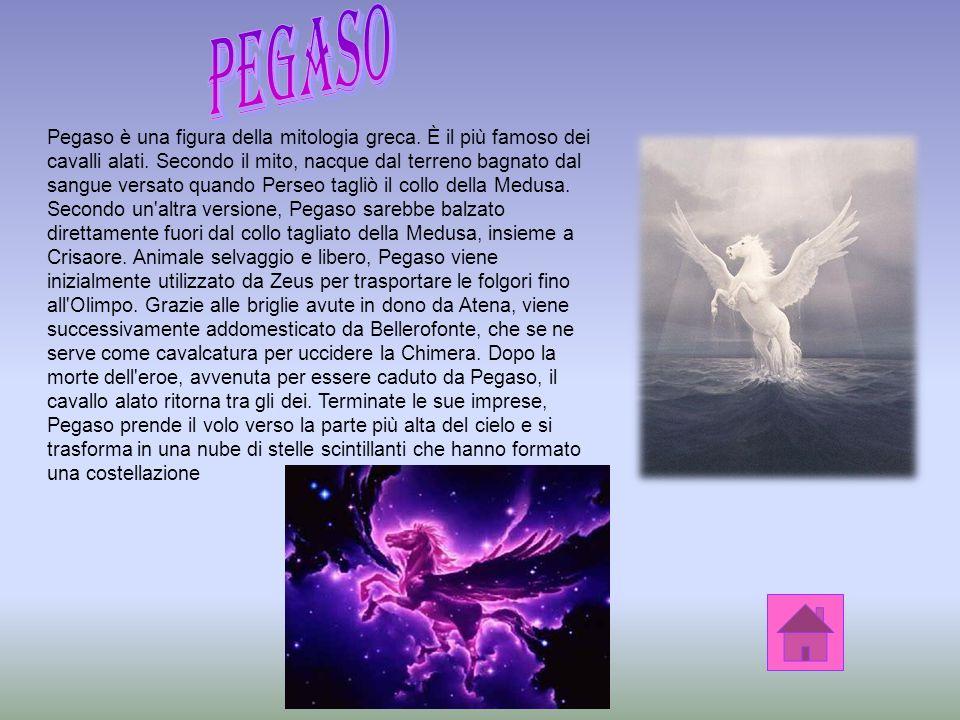 Pegaso è una figura della mitologia greca.È il più famoso dei cavalli alati.