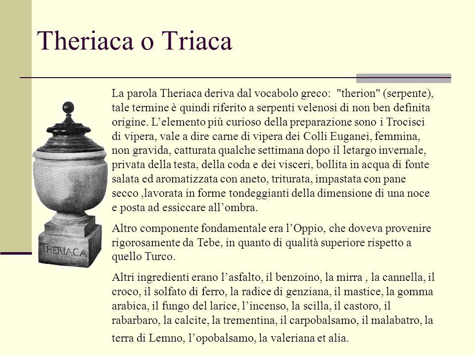 Theriaca o Triaca La parola Theriaca deriva dal vocabolo greco: