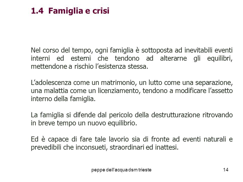 peppe dell'acqua dsm trieste14 1.4 Famiglia e crisi Nel corso del tempo, ogni famiglia è sottoposta ad inevitabili eventi interni ed esterni che tendo