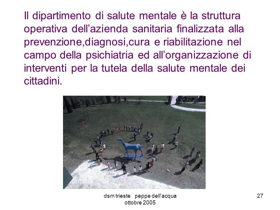 dsm trieste peppe dell acqua ottobre 2005 27 Il dipartimento di salute mentale è la struttura operativa dellazienda sanitaria finalizzata alla prevenzione,diagnosi,cura e riabilitazione nel campo della psichiatria ed allorganizzazione di interventi per la tutela della salute mentale dei cittadini.