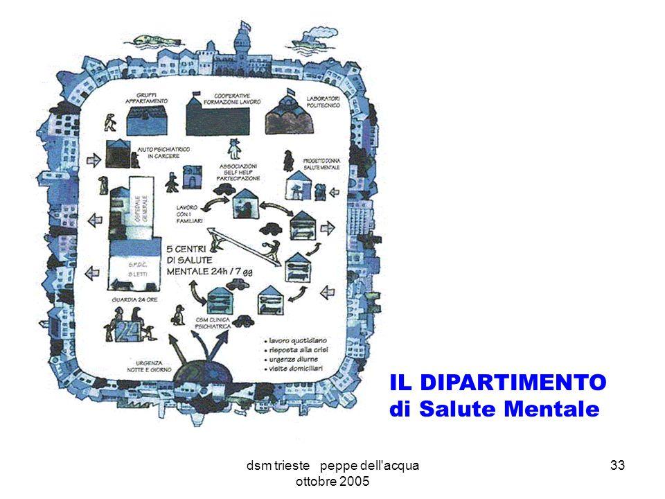 dsm trieste peppe dell acqua ottobre 2005 33 IL DIPARTIMENTO di Salute Mentale