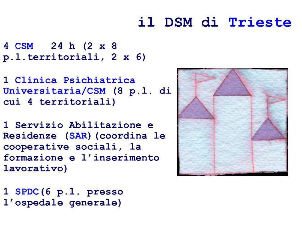 il DSM di Trieste 4 CSM 24 h (2 x 8 p.l.territoriali, 2 x 6) 1 Clinica Psichiatrica Universitaria/CSM (8 p.l.