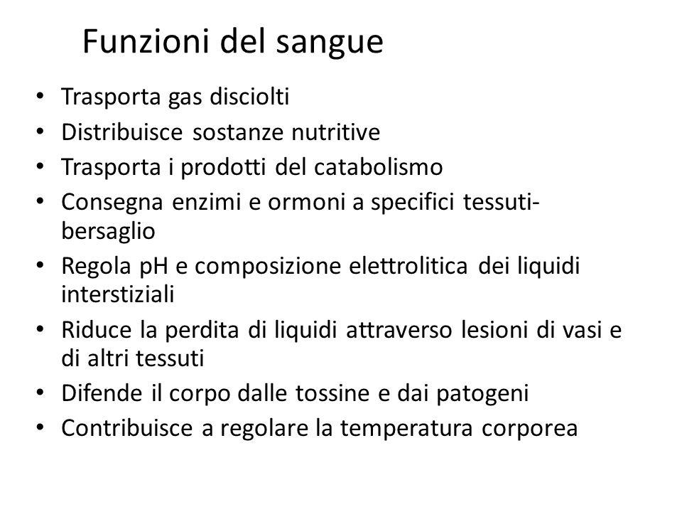 Funzioni del sangue Trasporta gas disciolti Distribuisce sostanze nutritive Trasporta i prodotti del catabolismo Consegna enzimi e ormoni a specifici