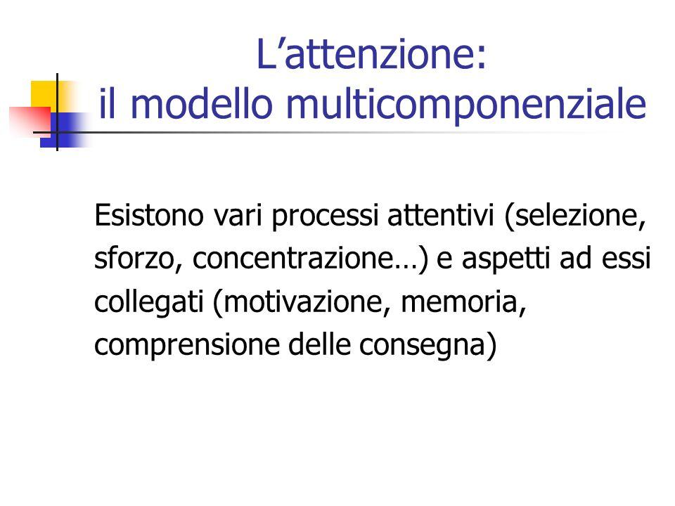 Lattenzione: il modello multicomponenziale Esistono vari processi attentivi (selezione, sforzo, concentrazione…) e aspetti ad essi collegati (motivazione, memoria, comprensione delle consegna)