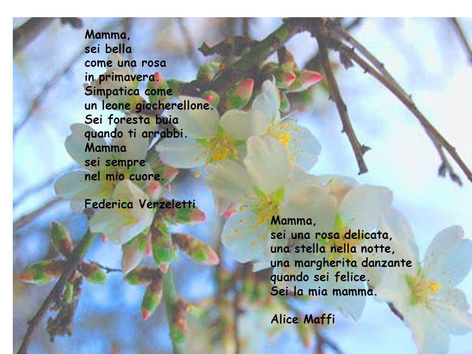 2 Mamma, sei bella come una rosa in primavera. Simpatica come un leone giocherellone. Sei foresta buia quando ti arrabbi. Mamma sei sempre nel mio cuo