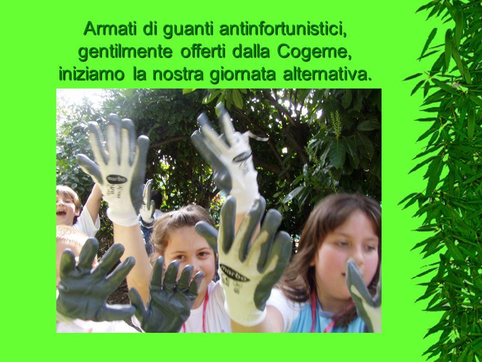 Armati di guanti antinfortunistici, gentilmente offerti dalla Cogeme, iniziamo la nostra giornata alternativa.
