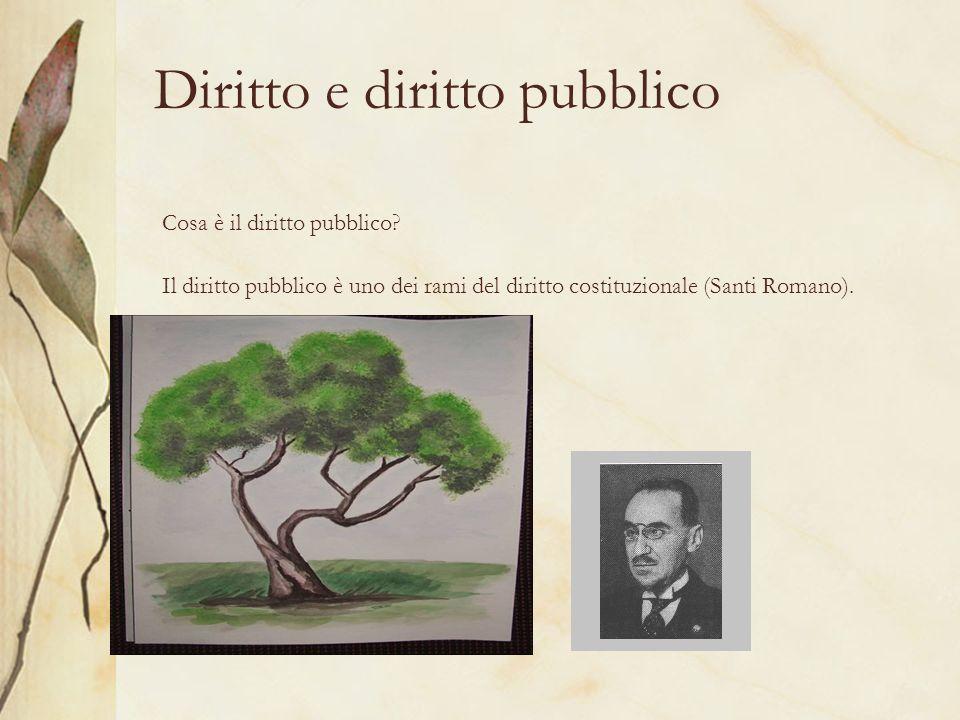 Diritto e diritto pubblico Cosa è il diritto pubblico? Il diritto pubblico è uno dei rami del diritto costituzionale (Santi Romano).