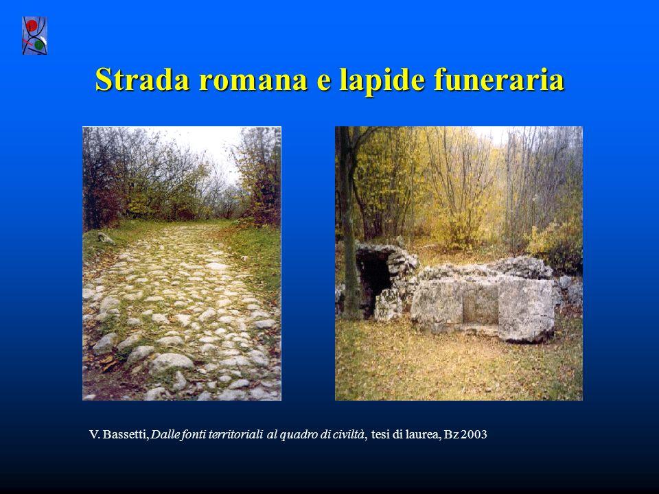 V. Bassetti, Dalle fonti territoriali al quadro di civiltà, tesi di laurea, Bz 2003 Fontanaromana Fontana romana