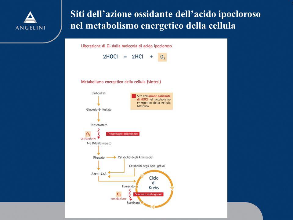 1 Amukine Med 0.05% Elevato profilo di tollerabilità.