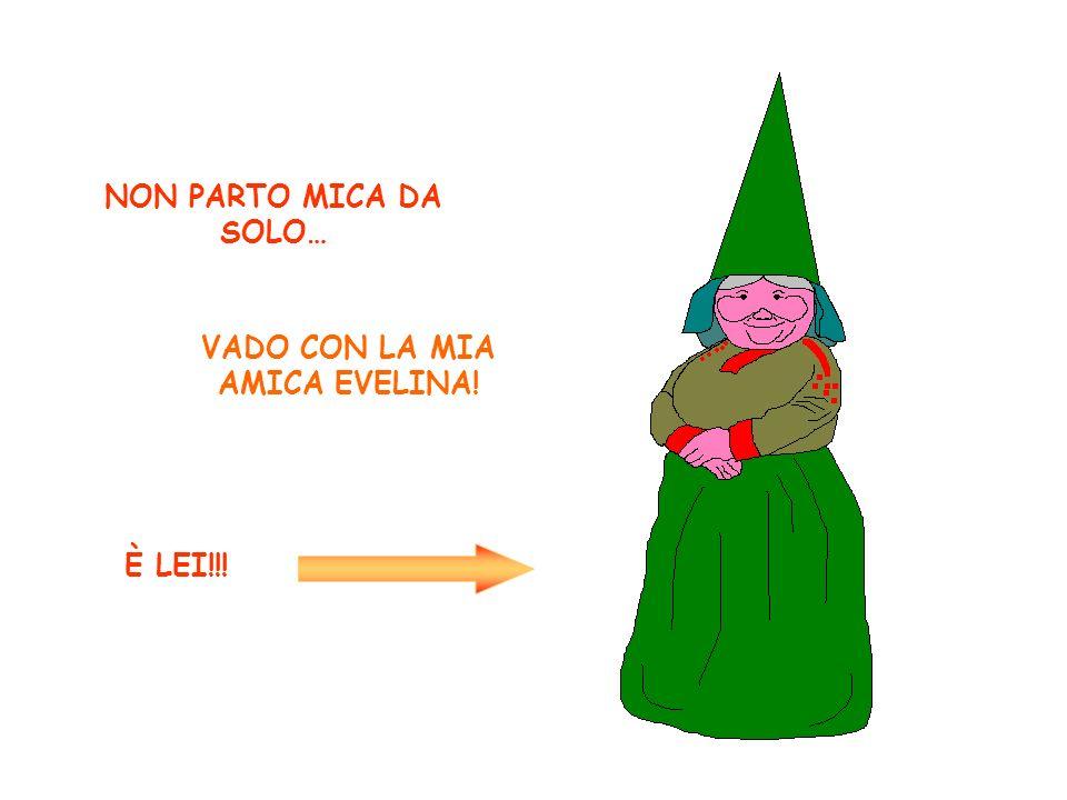 NON PARTO MICA DA SOLO… VADO CON LA MIA AMICA EVELINA! È LEI!!!