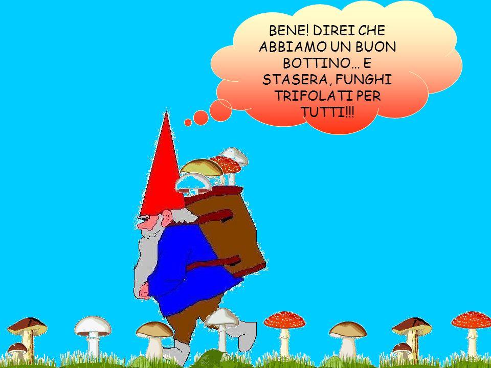 BENE! DIREI CHE ABBIAMO UN BUON BOTTINO… E STASERA, FUNGHI TRIFOLATI PER TUTTI!!!