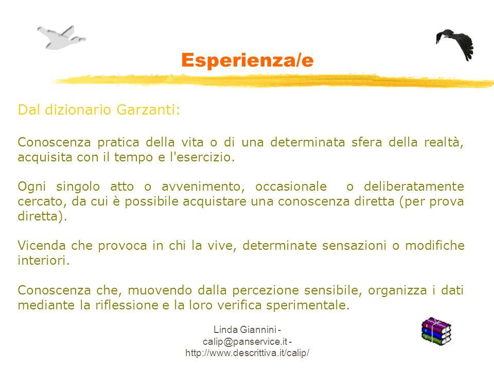 Linda Giannini - calip@panservice.it - http://www.descrittiva.it/calip/ Esperienza/e Dal dizionario Garzanti: Conoscenza pratica della vita o di una determinata sfera della realtà, acquisita con il tempo e l esercizio.