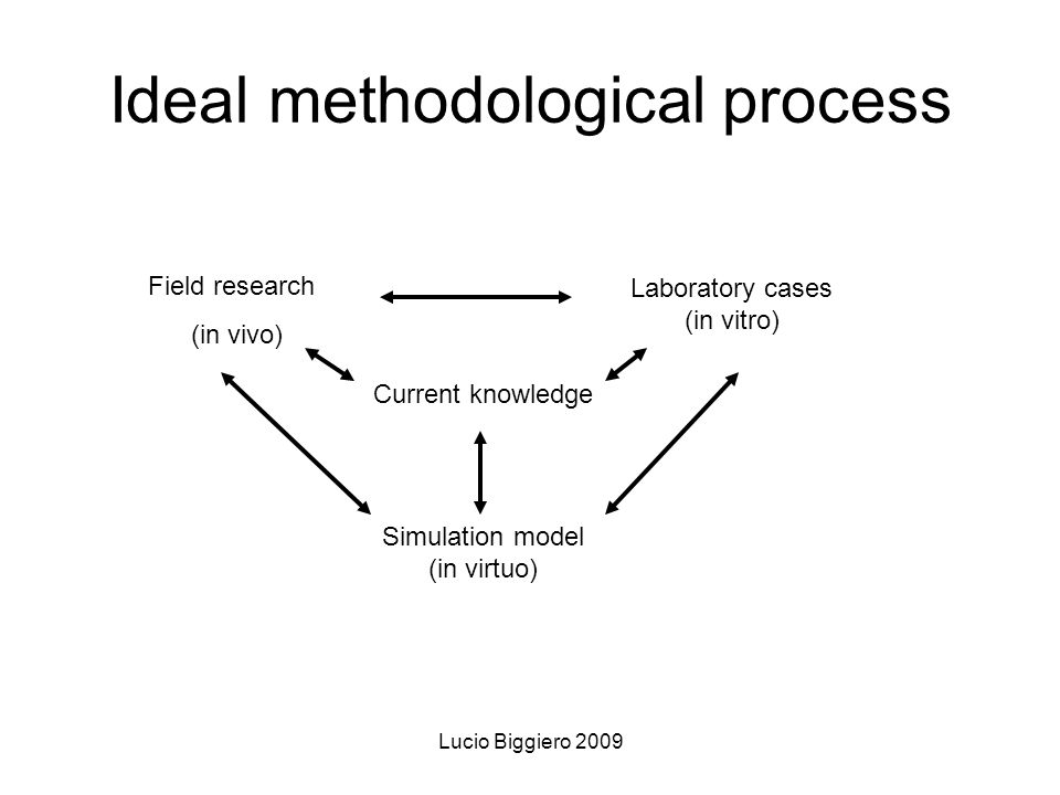 Lucio Biggiero 2009 Ideal methodological process Current knowledge Simulation model (in virtuo) Field research (in vivo) Laboratory cases (in vitro)