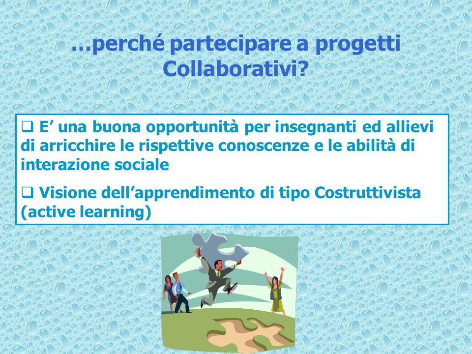 E una buona opportunità per insegnanti ed allievi di arricchire le rispettive conoscenze e le abilità di interazione sociale Visione dellapprendimento