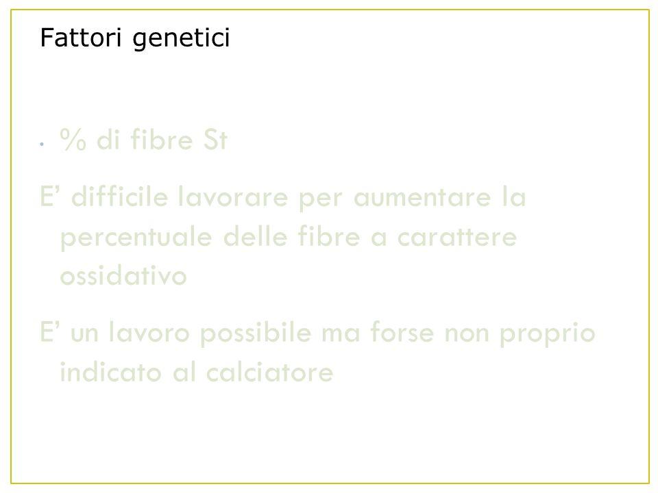 Fattori genetici % di fibre St E difficile lavorare per aumentare la percentuale delle fibre a carattere ossidativo E un lavoro possibile ma forse non proprio indicato al calciatore