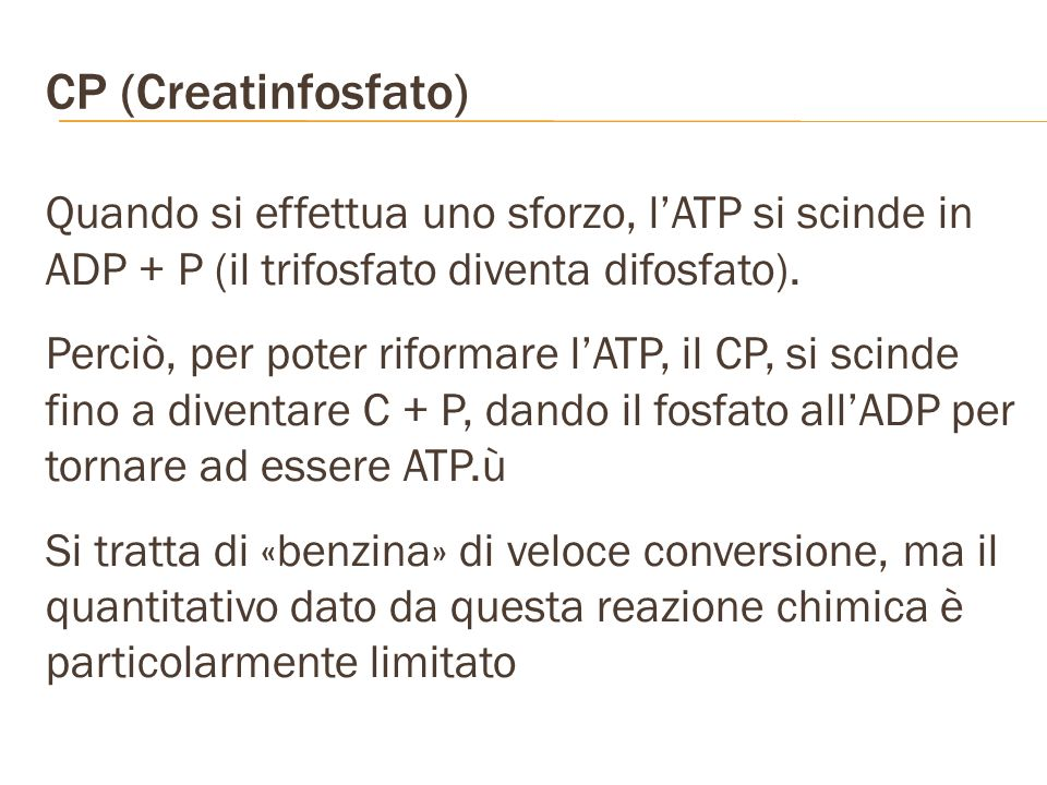 CP (Creatinfosfato) Quando si effettua uno sforzo, lATP si scinde in ADP + P (il trifosfato diventa difosfato). Perciò, per poter riformare lATP, il C