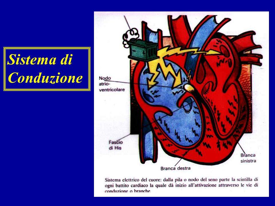 Malattie delle valvole cardiache