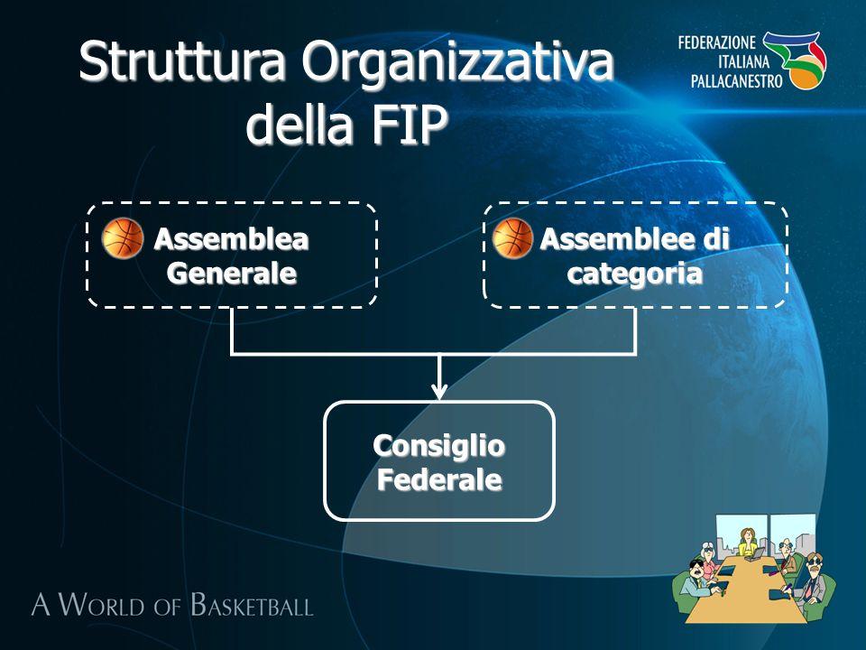 Struttura Organizzativa della FIP Segretario Generale Area Amministrazione e Funzionamento Amministrazione e Tesoreria Settore Organizzazione Territoriale Contabilità Affiliate e Tesserati Ufficio Contratti e Forniture