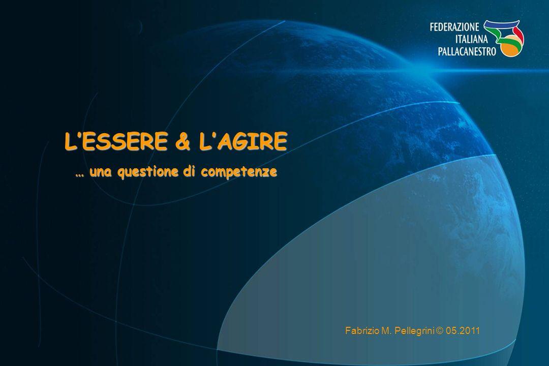 LESSERE & LAGIRE … una questione di competenze Fabrizio M. Pellegrini © 05.2011