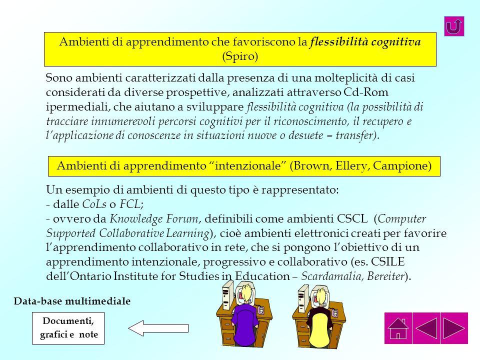Ambienti di apprendimento che favoriscono la flessibilità cognitiva (Spiro) Sono ambienti caratterizzati dalla presenza di una molteplicità di casi co