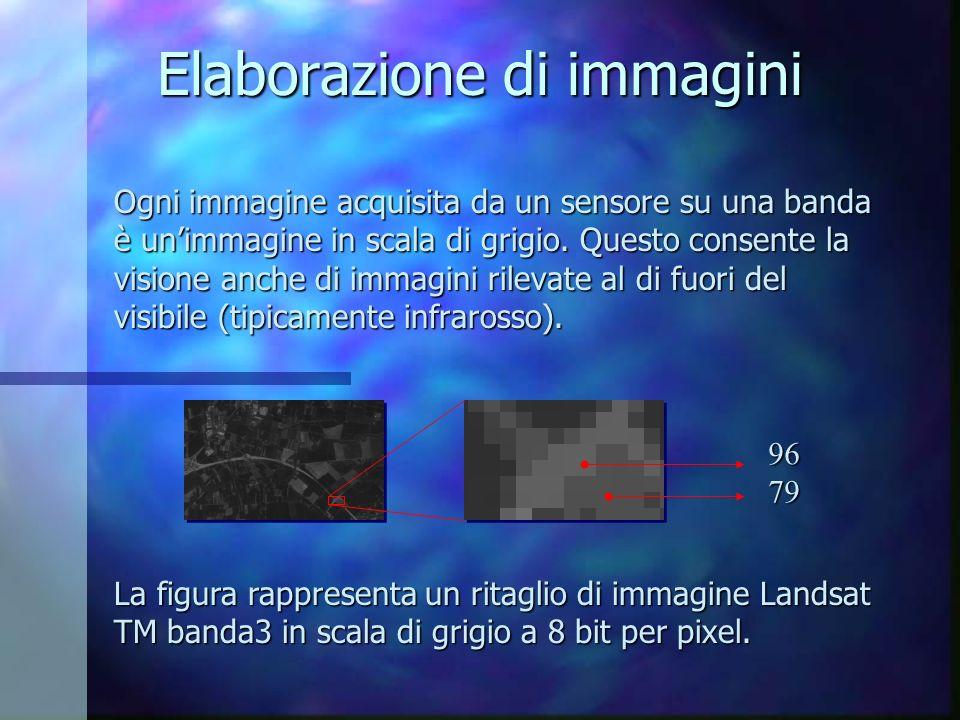 Elaborazione di immagini Ogni immagine acquisita da un sensore su una banda è unimmagine in scala di grigio. Questo consente la visione anche di immag