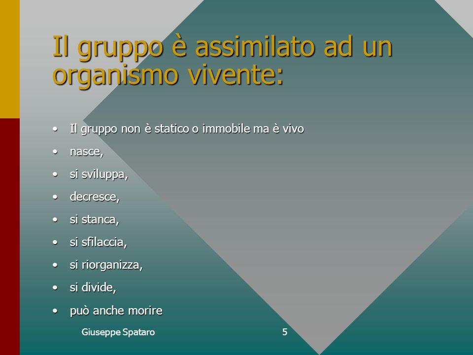 Giuseppe Spataro4 Organizzazione Come elemento costitutivo del sistema e,quindi, come lelemento che conferisce unità a quel corpo.Come elemento costitutivo del sistema e,quindi, come lelemento che conferisce unità a quel corpo.