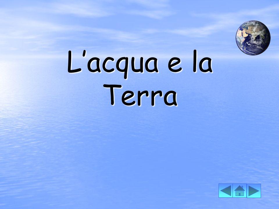 Lacqua è l origine della vita, come nella Nascita di Venere, di Sandro Botticelli.