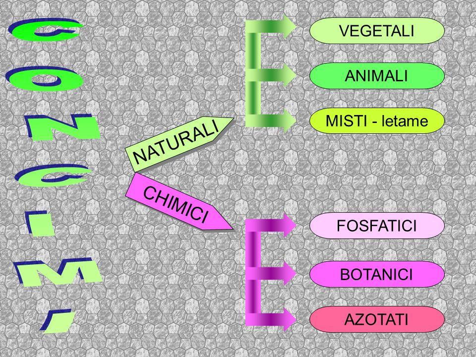 NATURALI CHIMICI VEGETALI MISTI - letame ANIMALI FOSFATICI BOTANICI AZOTATI
