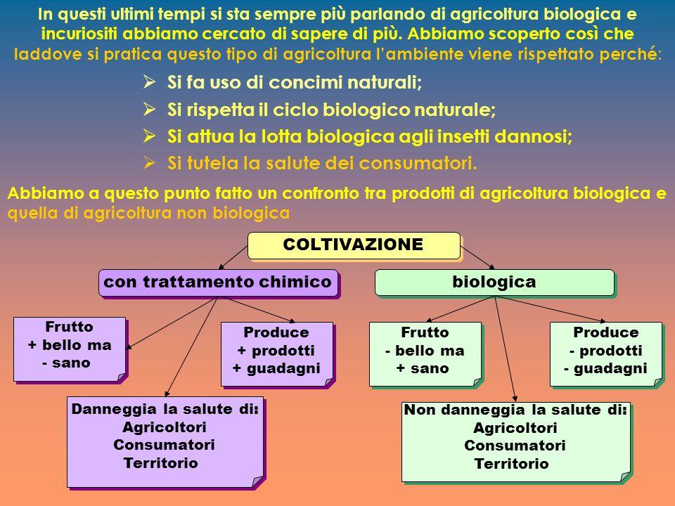 In questi ultimi tempi si sta sempre più parlando di agricoltura biologica e incuriositi abbiamo cercato di sapere di più.