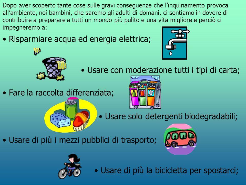 Dopo aver scoperto tante cose sulle gravi conseguenze che linquinamento provoca allambiente, noi bambini, che saremo gli adulti di domani, ci sentiamo in dovere di contribuire a preparare a tutti un mondo più pulito e una vita migliore e perciò ci impegneremo a: Risparmiare acqua ed energia elettrica; Usare con moderazione tutti i tipi di carta; Fare la raccolta differenziata; Usare solo detergenti biodegradabili; Usare di più i mezzi pubblici di trasporto; Usare di più la bicicletta per spostarci;