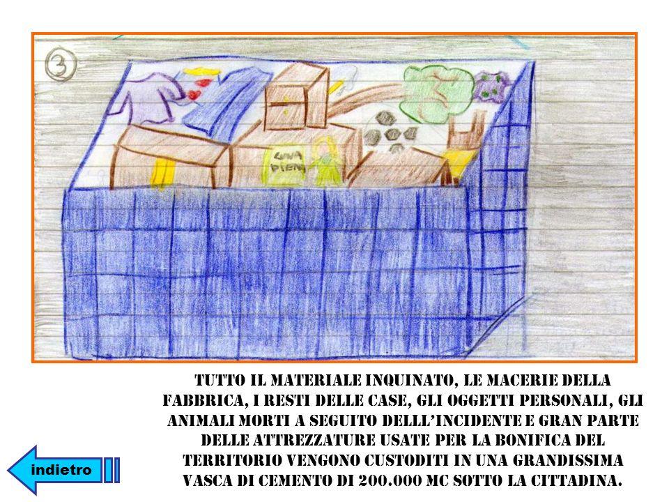 Tutto il materiale inquinato, le macerie della fabbrica, i resti delle case, gli oggetti personali, gli animali morti a seguito delllincidente e gran parte delle attrezzature usate per la bonifica del territorio vengono custoditi in una grandissima vasca di cemento di 200.000 mc sotto la cittadina.