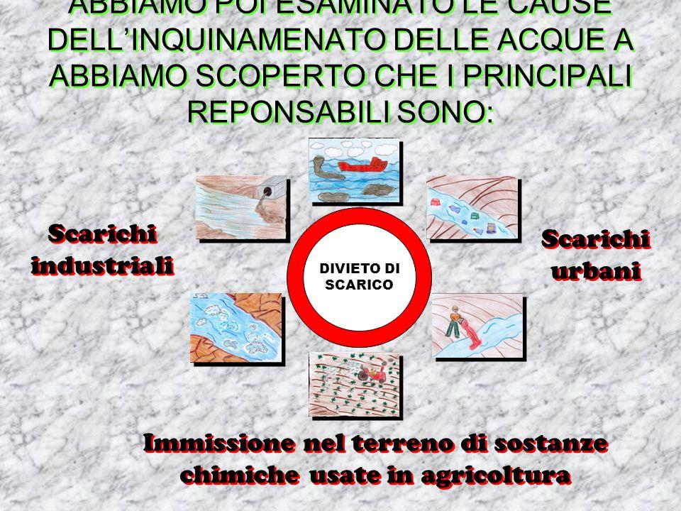 ABBIAMO POI ESAMINATO LE CAUSE DELLINQUINAMENATO DELLE ACQUE A ABBIAMO SCOPERTO CHE I PRINCIPALI REPONSABILI SONO: Scarichi industriali Scarichi industriali Scarichi urbani Scarichi urbani Immissione nel terreno di sostanze chimiche usate in agricoltura Immissione nel terreno di sostanze chimiche usate in agricoltura DIVIETO DI SCARICO