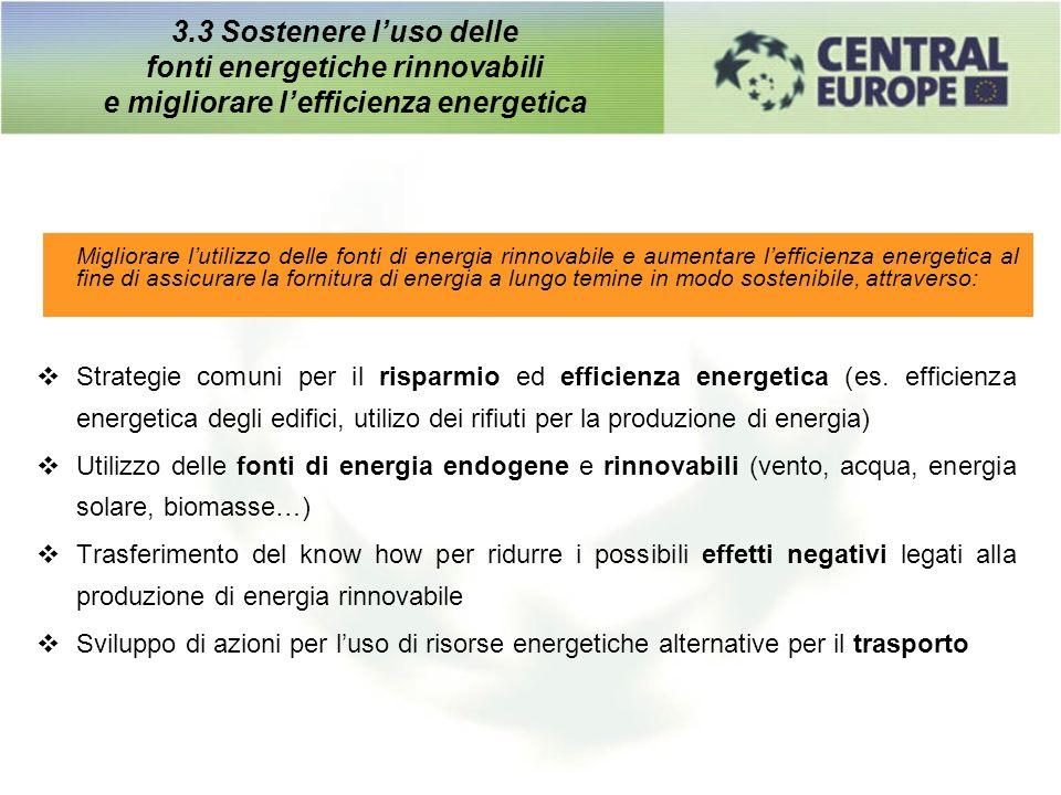 3.3 Sostenere luso delle fonti energetiche rinnovabili e migliorare lefficienza energetica Migliorare lutilizzo delle fonti di energia rinnovabile e a
