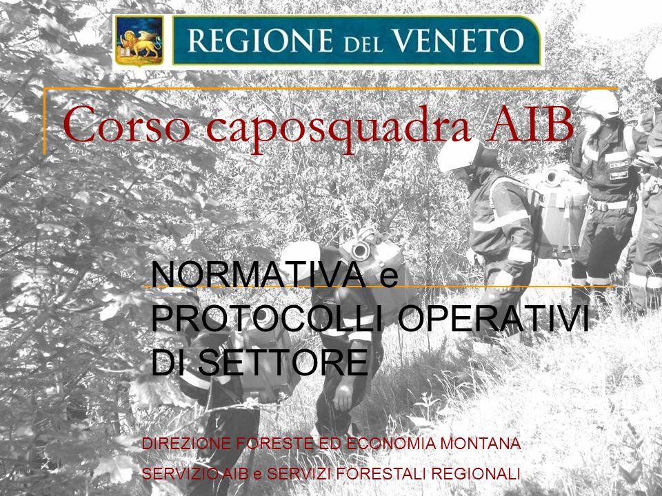 Corso caposquadra AIB NORMATIVA e PROTOCOLLI OPERATIVI DI SETTORE DIREZIONE FORESTE ED ECONOMIA MONTANA SERVIZIO AIB e SERVIZI FORESTALI REGIONALI