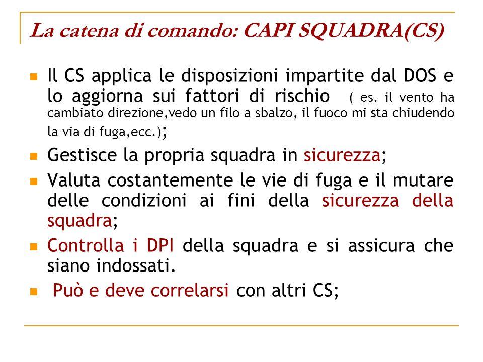 La catena di comando: CAPI SQUADRA(CS) Il CS applica le disposizioni impartite dal DOS e lo aggiorna sui fattori di rischio ( es. il vento ha cambiato