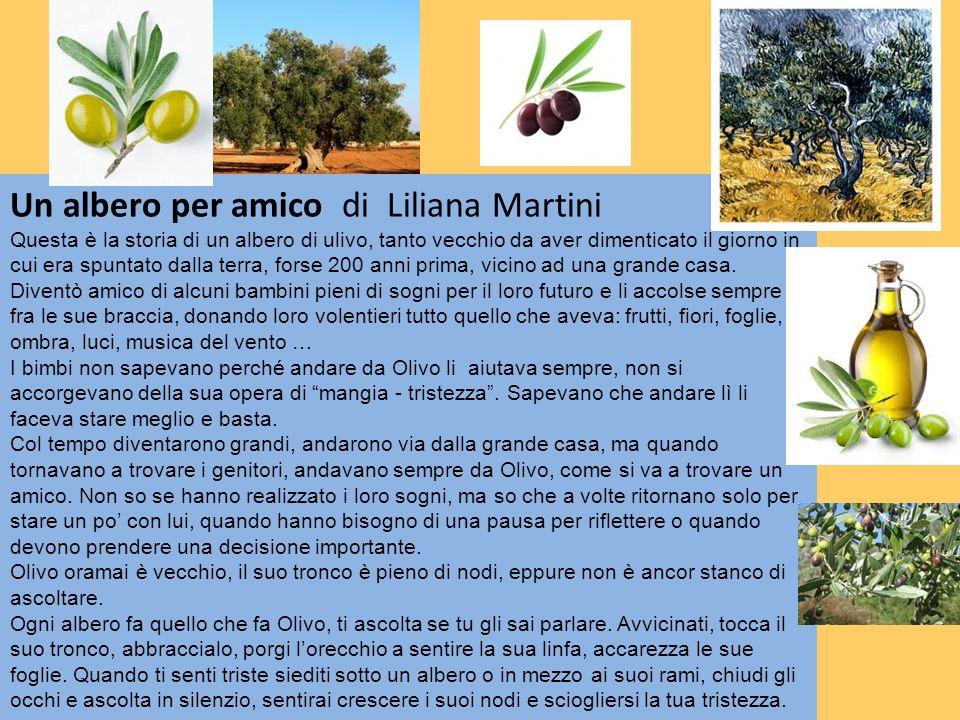 Un albero per amico di Liliana Martini Questa è la storia di un albero di ulivo, tanto vecchio da aver dimenticato il giorno in cui era spuntato dalla