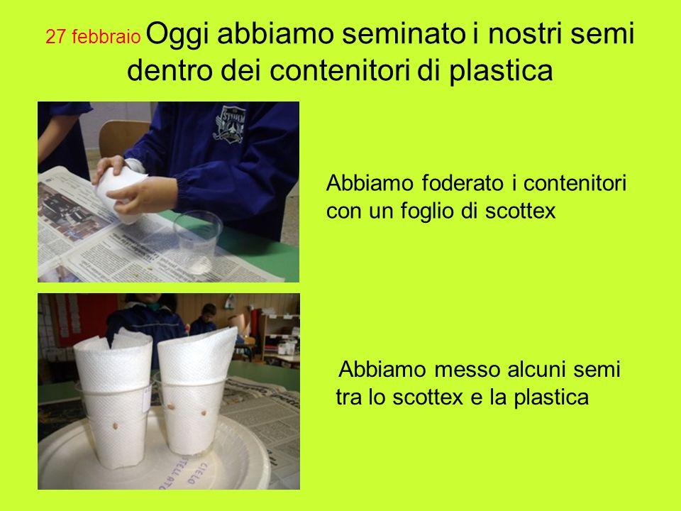 27 febbraio Oggi abbiamo seminato i nostri semi dentro dei contenitori di plastica Abbiamo foderato i contenitori con un foglio di scottex Abbiamo mes