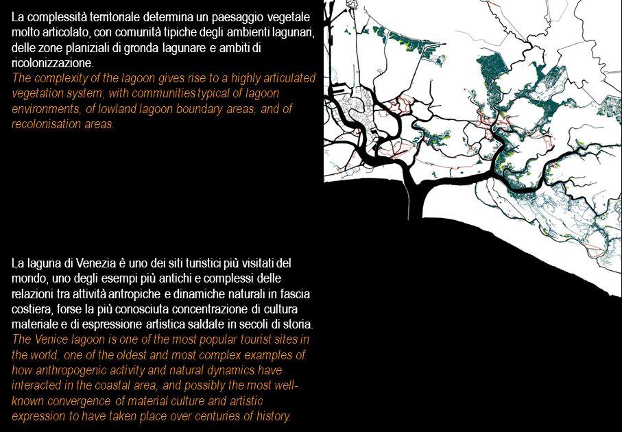 La complessità territoriale determina un paesaggio vegetale molto articolato, con comunità tipiche degli ambienti lagunari, delle zone planiziali di gronda lagunare e ambiti di ricolonizzazione.