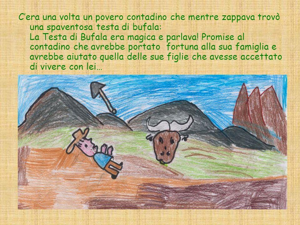 Cera una volta un povero contadino che mentre zappava trovò una spaventosa testa di bufala: La Testa di Bufala era magica e parlava! Promise al contad