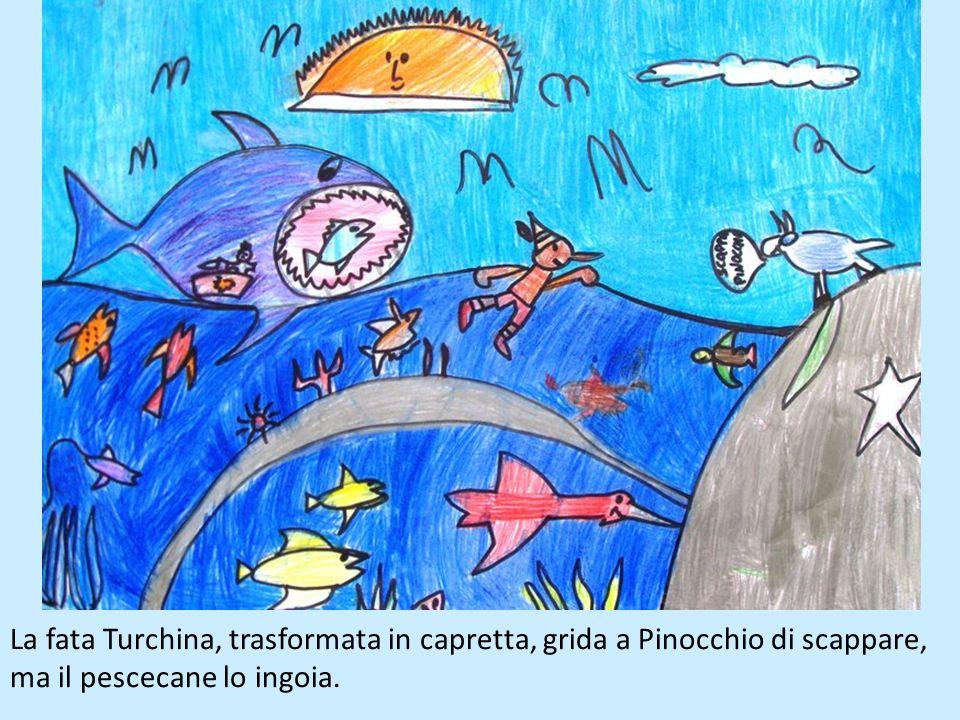 Il ciuchino Pinocchio si azzoppa facendo lo spettacolo nel circo, perciò viene venduto ad un uomo che lo vuole annegare per fare un tamburo con la sua
