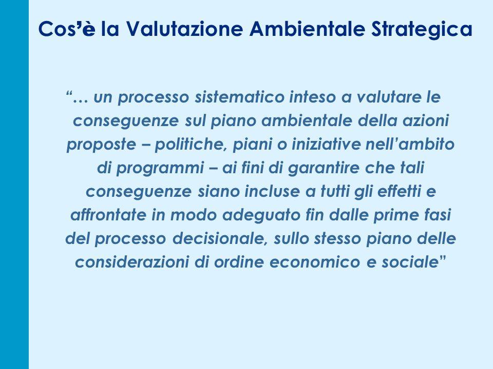 Cos è la Valutazione Ambientale Strategica … un processo sistematico inteso a valutare le conseguenze sul piano ambientale della azioni proposte – pol