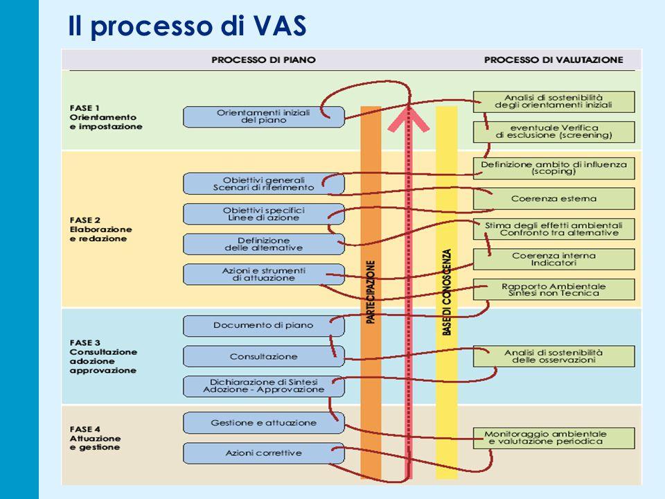 Il processo di VAS