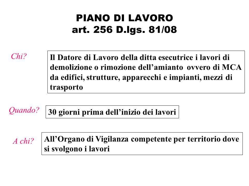PIANO DI LAVORO art.256 D.lgs.